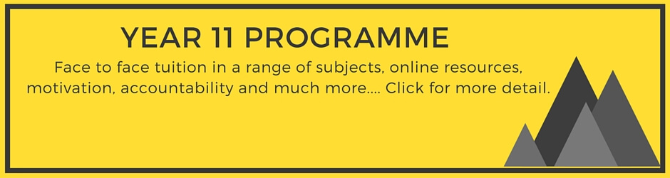 Year 11 Tuition Programme
